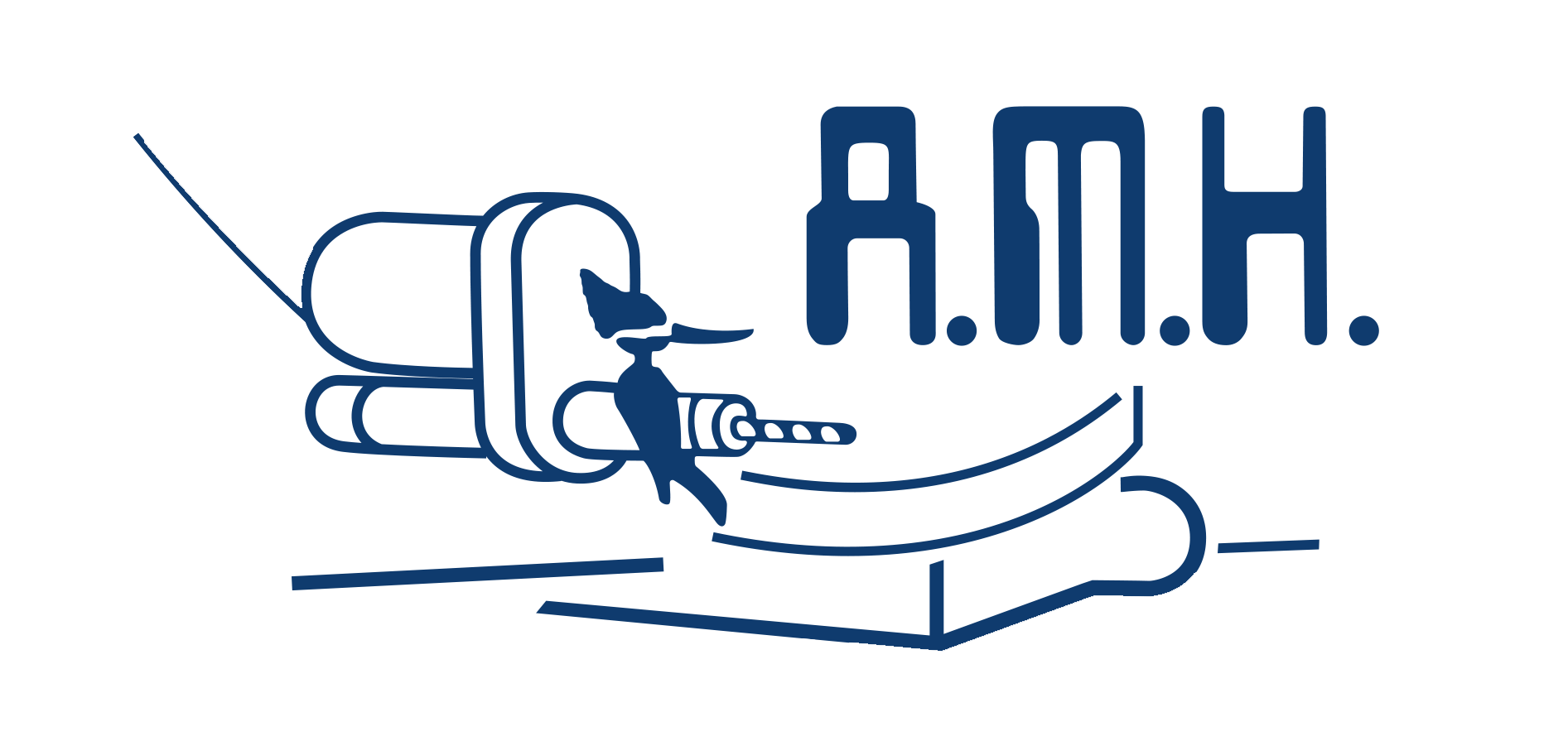 AMH COMPONENTES